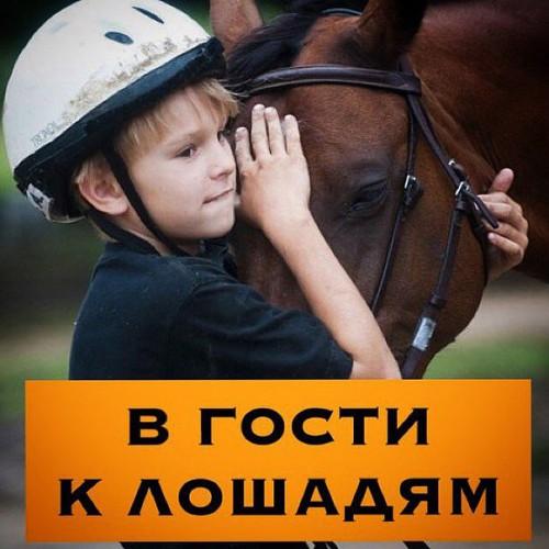 """Экскурсия для детей """"В гости к лошадям"""""""